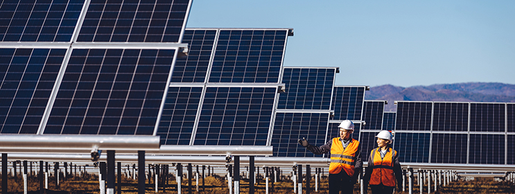 photo of male and female worker walking in front of large solar panels on a solar farm