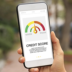woman holding mobile phone and checking her credit score