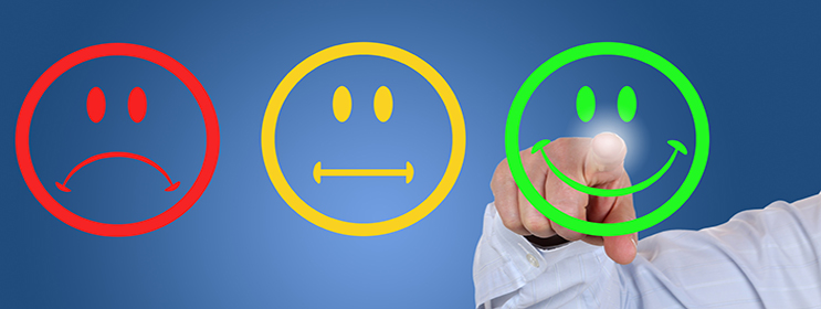 Survey Your Customers For Success